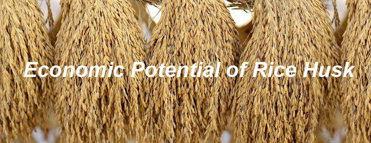 Economic Potential of rice husk into pellets