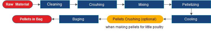 animal feed production process for starting your own feed pellets making factory
