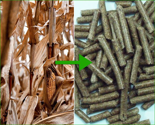 Make Biomass Pellets ~ How to start a wood pellet plant and production steps