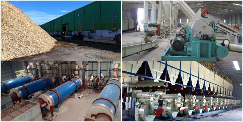 complet wood pelletizer line set up in Vietnam
