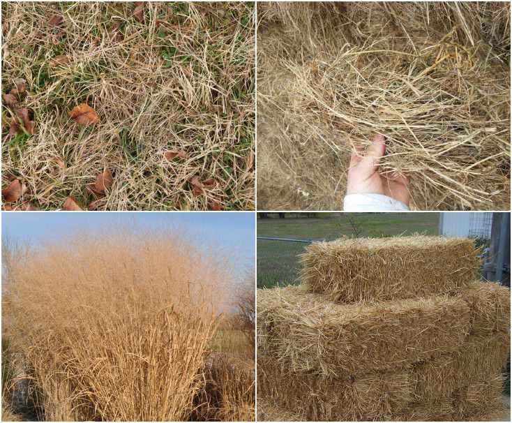 dry grass for pellet production