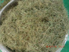 Grass Pellet Production Plant