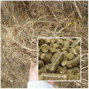 Grass Pellet Production Unit