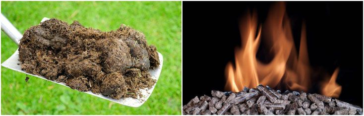 horse manure fuel pellets manufacturing process