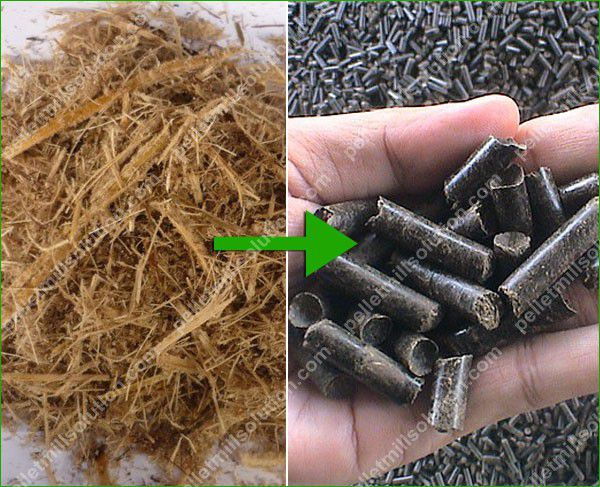 make bagasse pellets