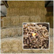 Rice Straw Pellet Making Machine