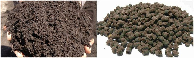making chicken manure fertilizer pellets - small to medium fertilizer production