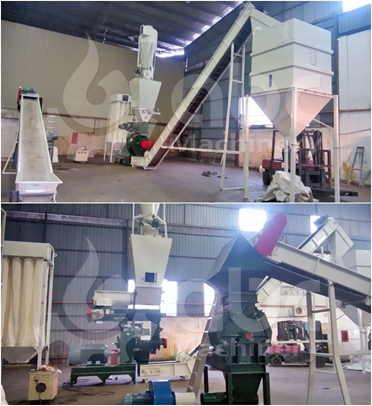 palm fiber pelletizing process designed for client with limited budget