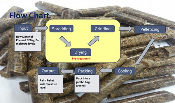 palm pellet production