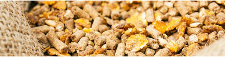 poultry feed pellet ingredients for making high quality chicken feedstuff