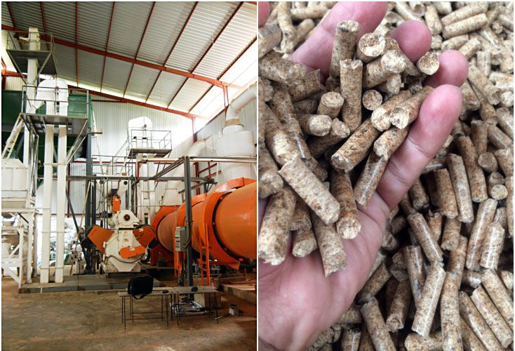 wood pellet production cost to start your own business